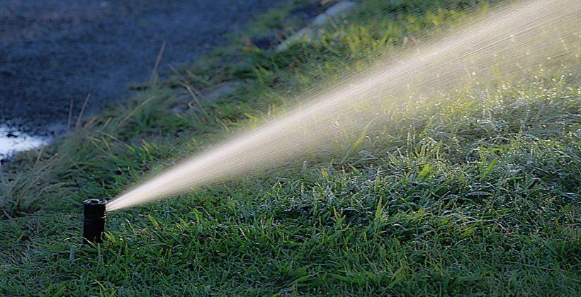 Piccola guida alle tecniche per l'irrigazione